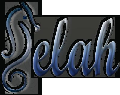 Selah Web Design